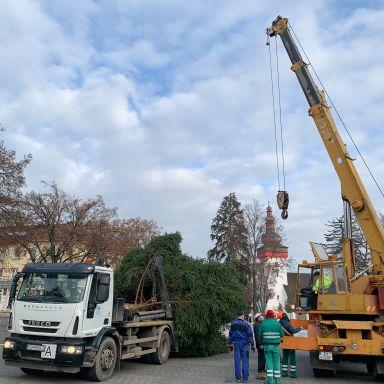 Stavanie vianočného stromu